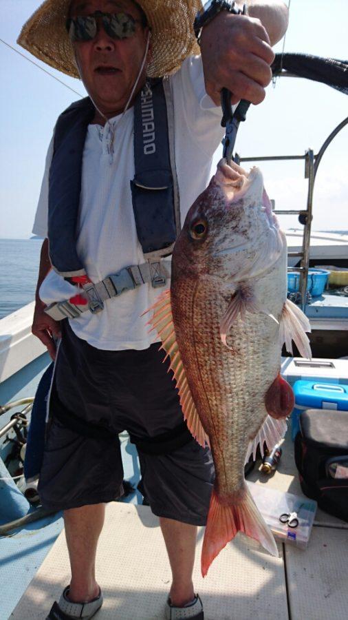 遠征真鯛 根魚